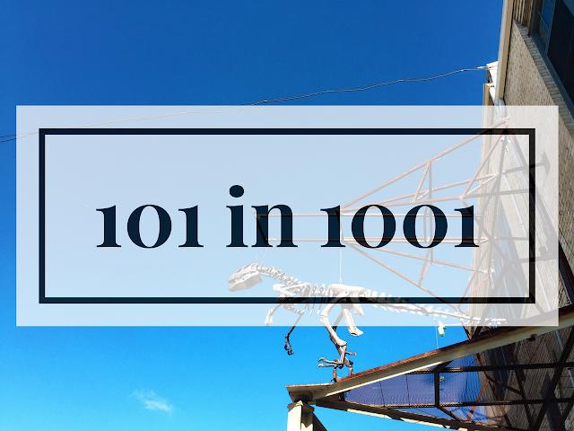 101 in 1001, goals