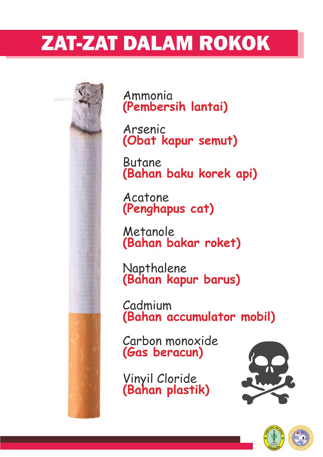 Materi Penyuluhan : Bahaya Merokok + Flip chart & Leaflet