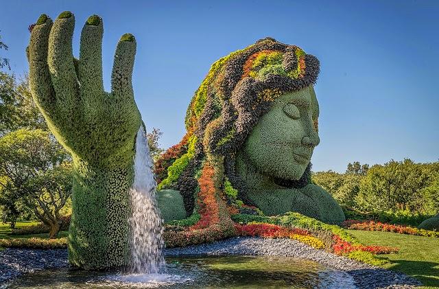 Jard n bot nico de culiac n entre los 16 mejores del mundo for Jardin botanico el ejido