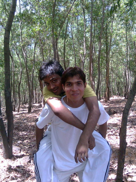 forest in matheran