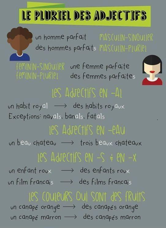 Przymiotniki - liczba mnoga przymiotników 1 - Francuski przy kawie