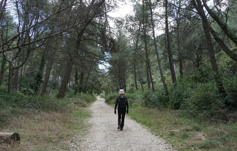 Sentier botanique Vallon St Clerg