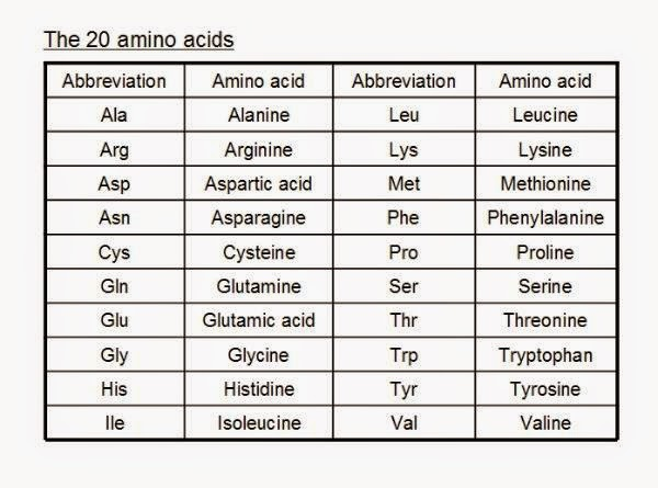 Acids And Bases List In Foods