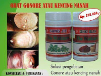 FASE PENYAKIT GONORE