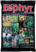 ZEPHYR 60wp