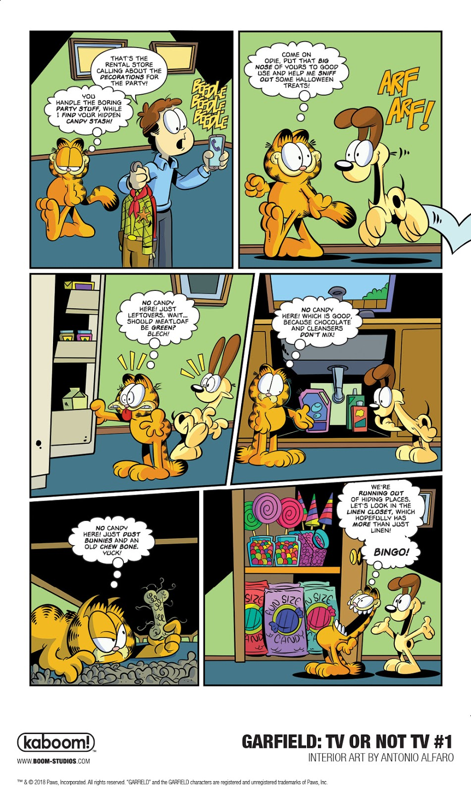 GARFIELD: TV OR NOT TV?