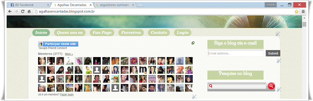 sumiram os seguidores do meu blog