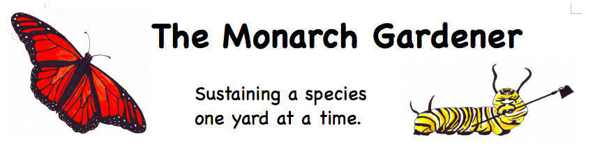 The Monarch Gardener