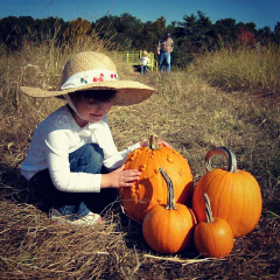 New England Fall Events Pumpkin Carving Challenge