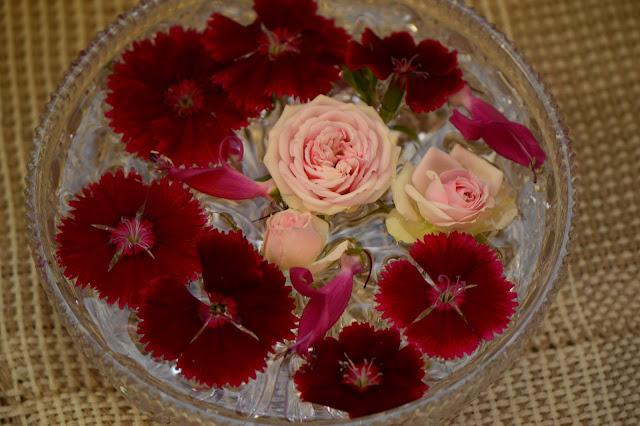 monday vase meme, miniature rose, dianthus, small sunny garden, amy myers, eremophila valentine