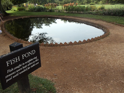 Fish pond located at Thomas Jefferson property Charlottesville, Virginia