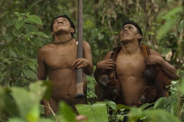 Bộ tộc Huaorani che tờ chim bằng lá cây 15