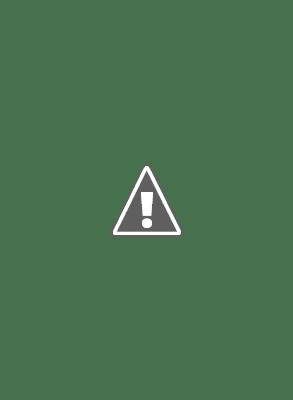 Thiếu Lâm - Nội Quyền - Tây Sơn Nhạn