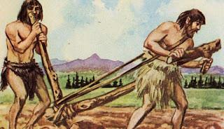 Risultati immagini per neolitico e agricoltura