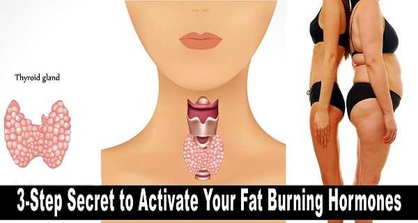 3-Step Secret to Activate Your Fat Burning Hormones and Lose Weight