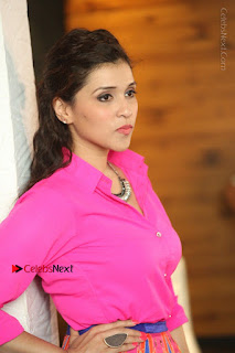 Actress Mannar Chopra in Pink Top and Blue Skirt at Rogue movie Interview  0149.JPG