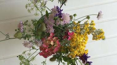 Flores frescas del jardín al jarrón