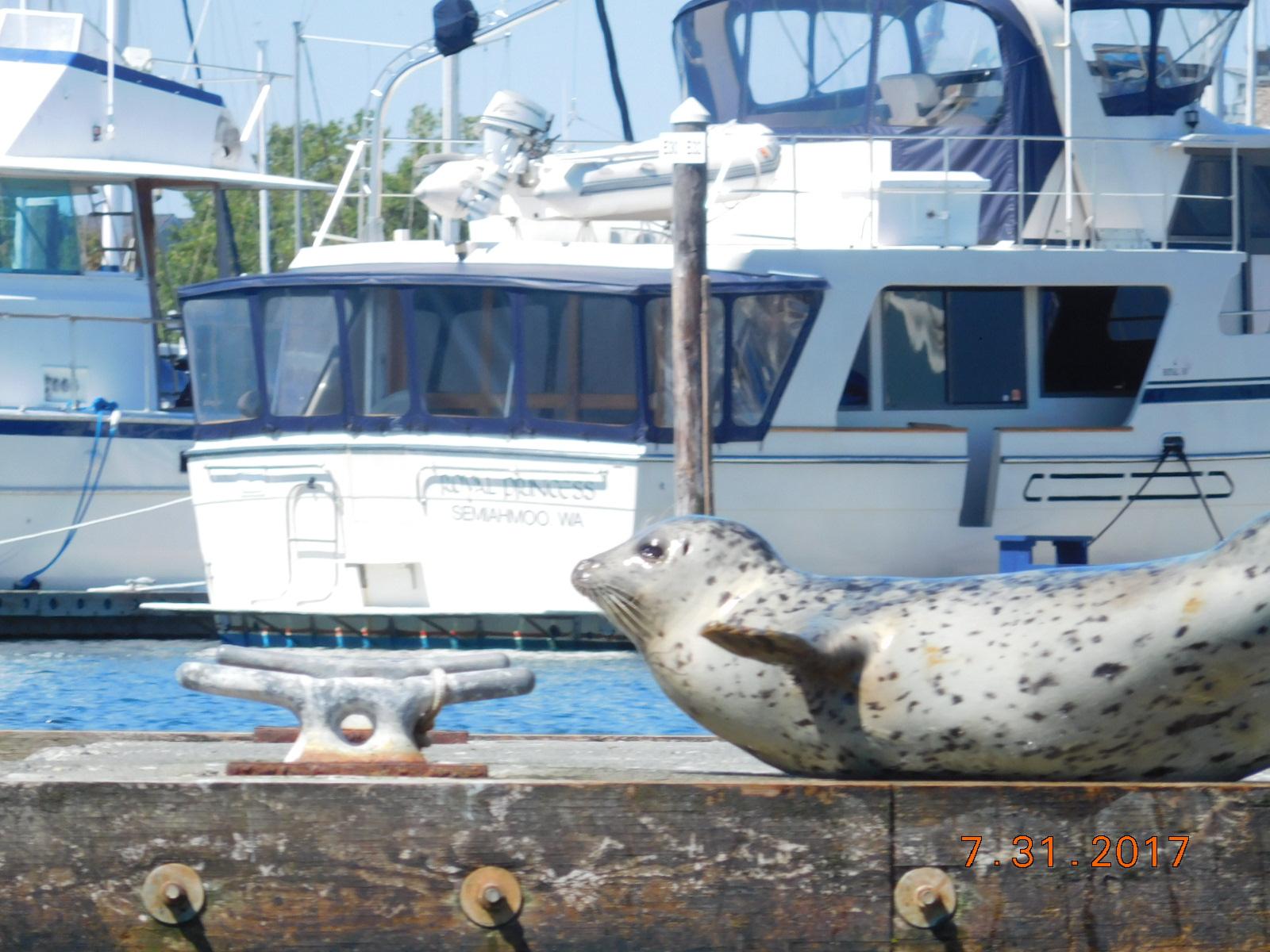 Maritime Len len and gloria s travels august 2017