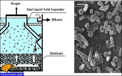 Cải tạo đạt chất lượng trạm xử lý nước thải - Cải tạo theo công nghệ kỵ khí