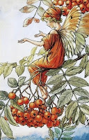 pīlādzis, rowan, rowan tree, latvian folklore, latvian mythology, latviešu folklora, latviešu mitoloģija, capital r, 2018, drawing