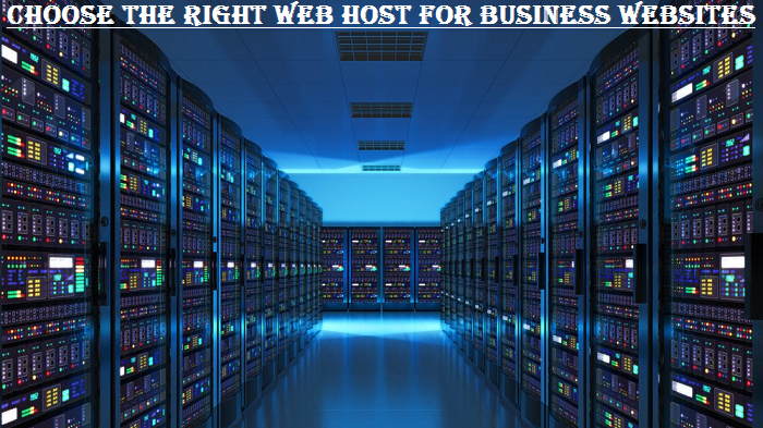Right Web Host for Business Websites