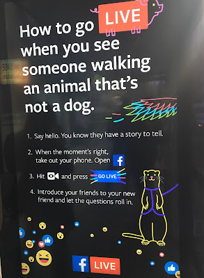 Facebook Live bus shelter ad