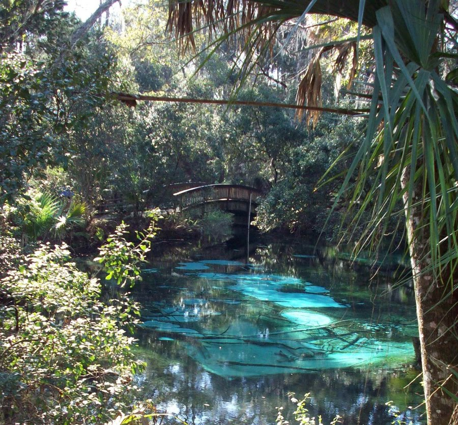 Gary And Delys Rv Travels Juniper Springs State Park And