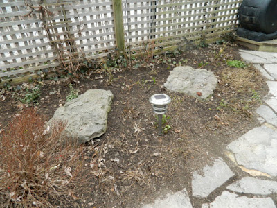 Leslieville Back Yard Spring Cleanup After by Paul Jung--a Toronto Organic Gardener