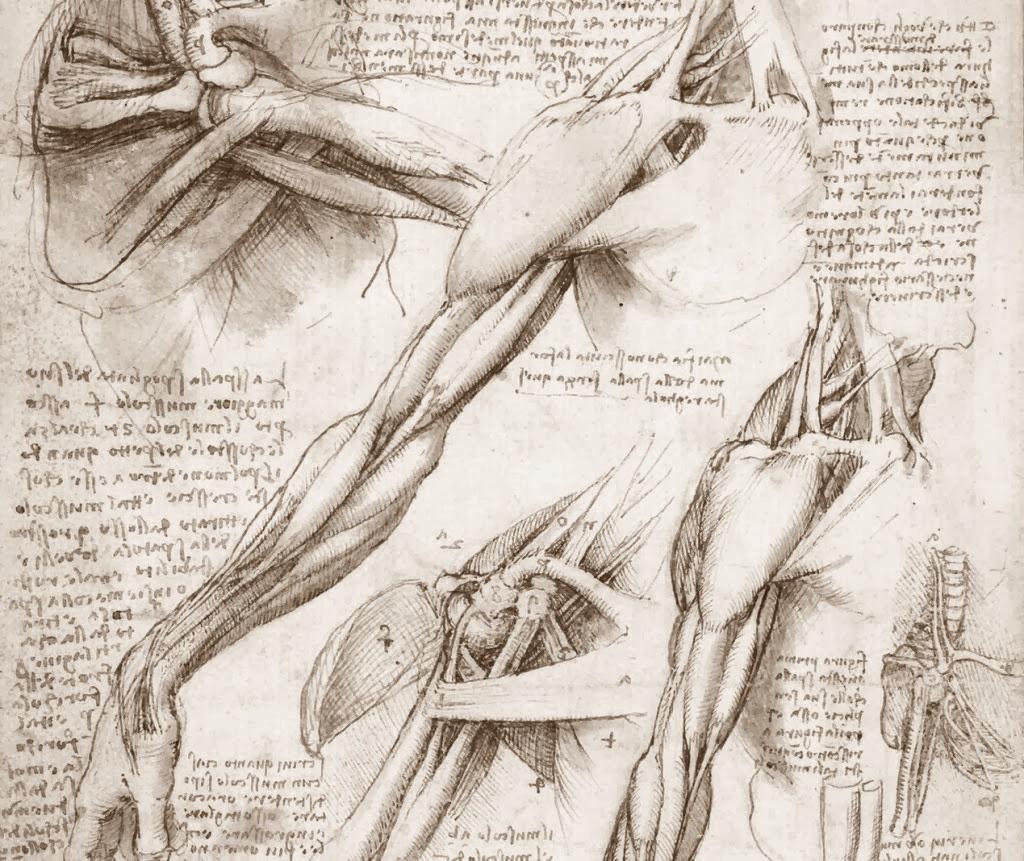 Leonardo  da  Vinci  Tutt Art