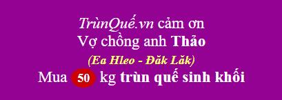 Trùn quế huyện Ea H'leo