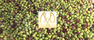 """<img src=""""olive oil in the news.jpg"""" alt=""""Must read articles about olive oil"""">"""