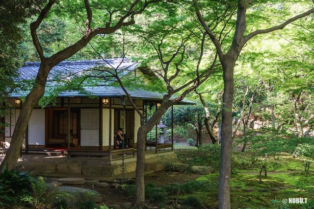 茶室~旧古河庭園