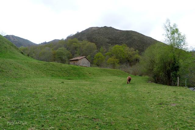 Ruta del Río Color - Piloña - Asturias