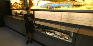 Museo y Neocueva de Altamira.