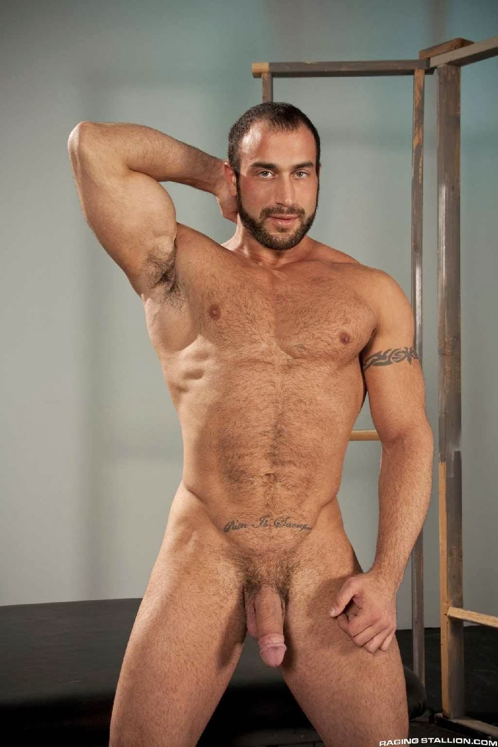 The World Of Best Gay Porn Stars The Chariots Best Gay -3502