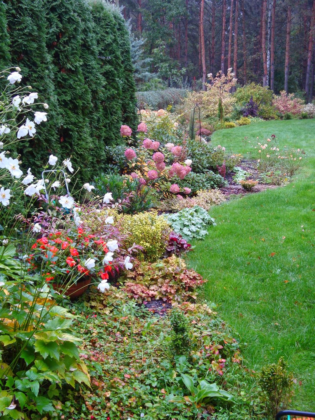 pstrokacizna w ogrodzie