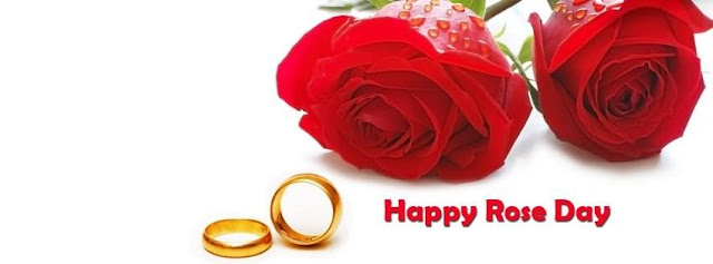 Happy Rose Day FB Cover Picture for Girls