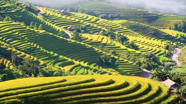 The great destinations to travel in November in Vietnam1