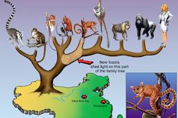 Pengantar Kajian Teori Evolusi