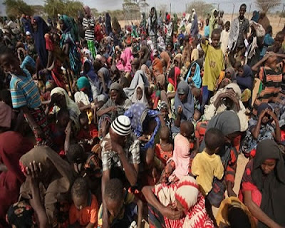 Police Arrest IDPs For Protesting In Borno