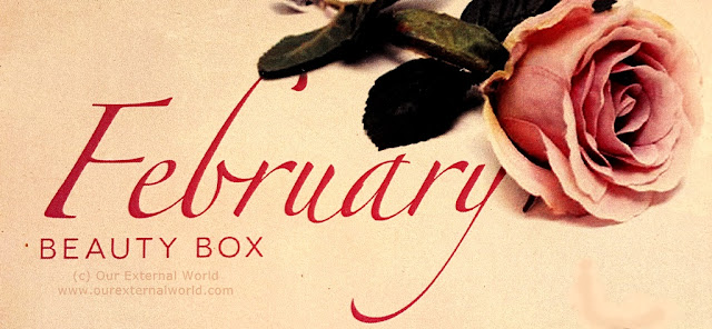 Unboxed: My Envy Box February Edition