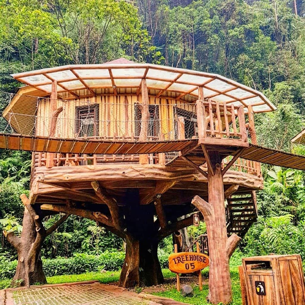 kamar rumah pohon taman safari