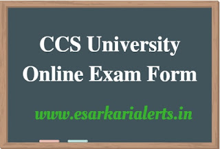 CCS University Online Exam Form 2017-18
