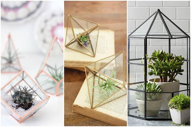Inspiracje - sukulenty w geometrycznym terrarium
