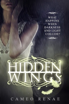 Hidden Wings Series Book 1