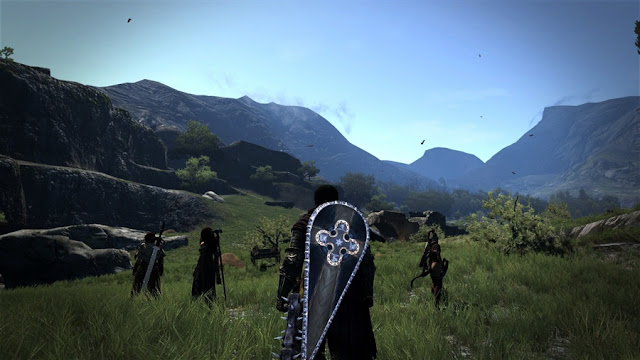 Dragon's Dogma Dark Arisen PC Download Photo