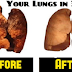 Health Tips: Cleanse Your Lungs Naturally In Just 3 Days