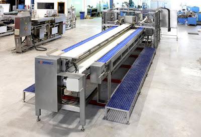 4 Different Types of Sardine Processing Machine