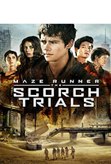 Maze Runner: The Scorch Trials (2015) BRRip 1080p Latino AC3 5.1 / Español Castellano AC3 5.1 / ingles AC3 5.1 BDRip m1080p
