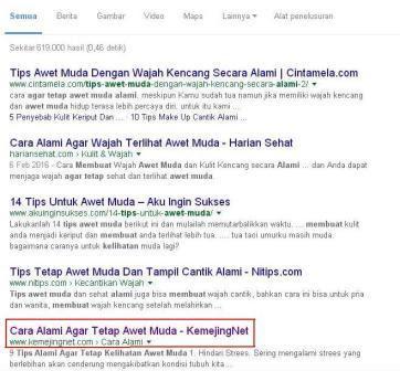 Manfaat Sub Judul Artikel H1, H2, H3, Dalam Hasil Pencarian Google